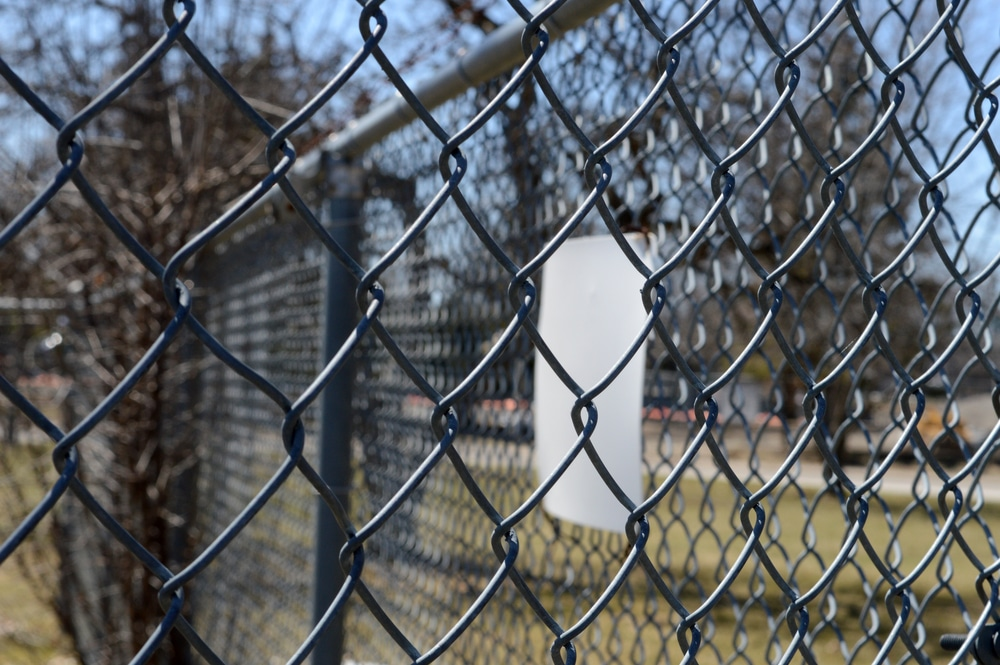 chain link type of fence