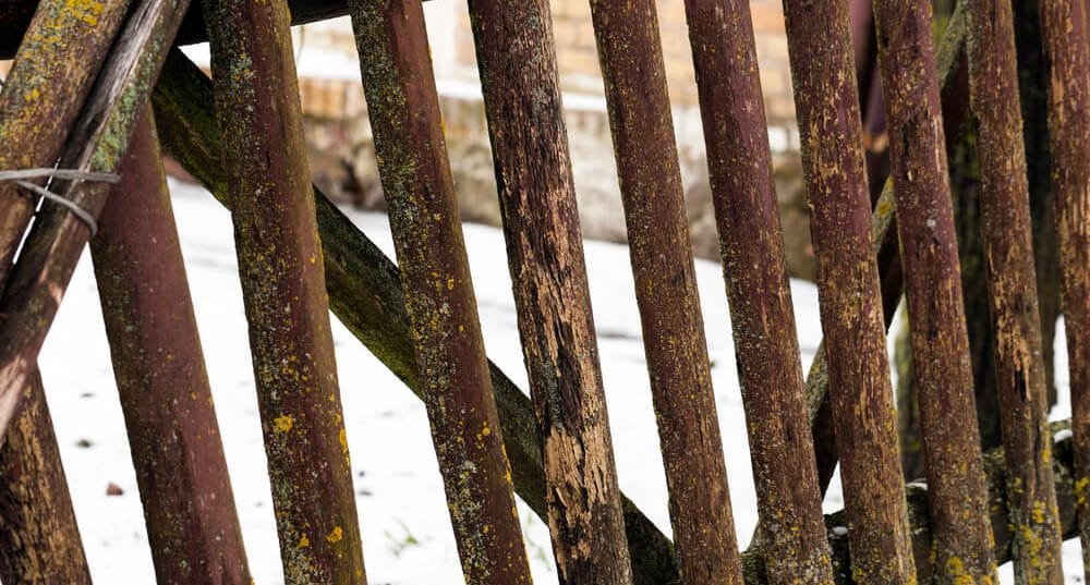 Old wooden fence - new orleans